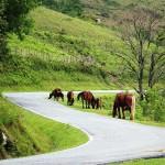 IMTBIKE Motorradreise Pyrenäen