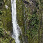 New Zealand Tour with IMTBIKE