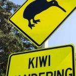 New Zealand Tour_9