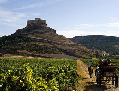 La Rioja – Ribera del Duero