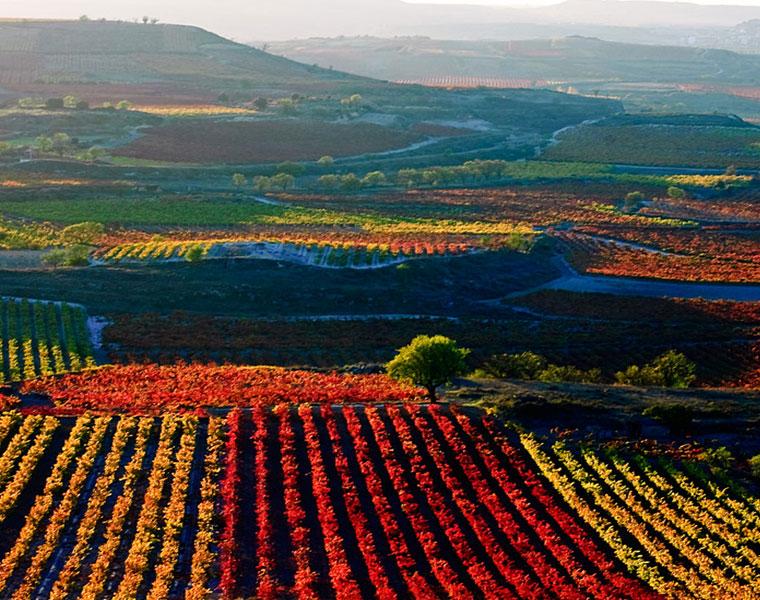 Soria – La Rioja