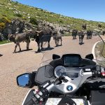 The-Great-Northern-Discovery-Motorbike-Tour